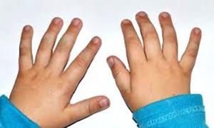 пальчиковая зарядка