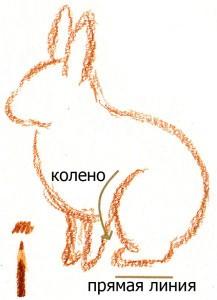рисуем кролика