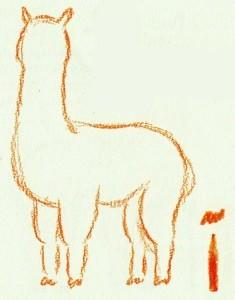 рисуем задние ноги и хвост альпака
