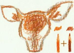 рисуем голову оленя