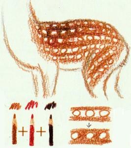 как нарисовать пятнистого оленя