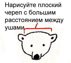 как просто нарисовать белого медведя