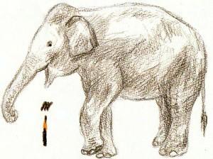 как нарисовать слона поэтапно для детей