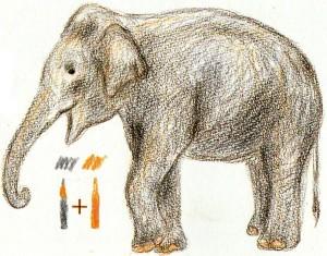 как нарисовать слона карандашом для детей