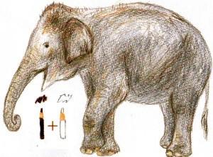 как легко нарисовать слона