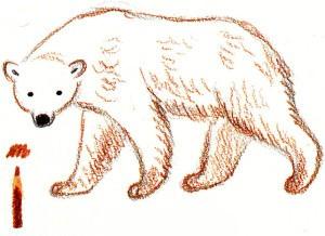 нарисовать белого медведя поэтапно ребенку
