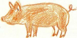 как нарисовать свинью поэтапно карандашом