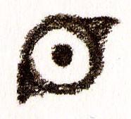рисуем глаз льва