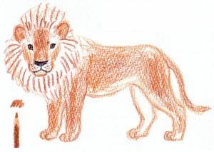 нарисовать льва поэтапно