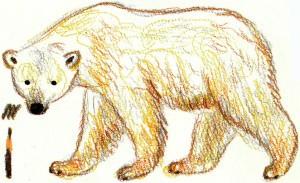 нарисовать белого медведя поэтапно