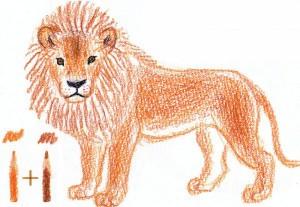 нарисовать льва карандашом