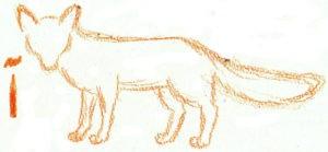 лиса нарисовать карандашом детям