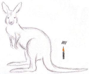 нарисовать кенгуру поэтапно ребенку