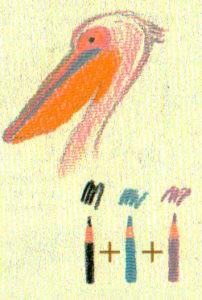 рисунки пеликана карандашом