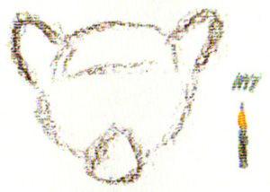 как нарисовать лемура поэтапно карандашом