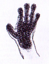 Рука лемура