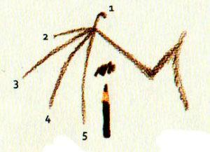как рисовать летучую мышь поэтапно